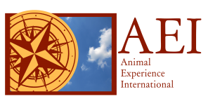 Logo for Animal Experience International