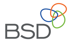 Logo for BSD Consulting