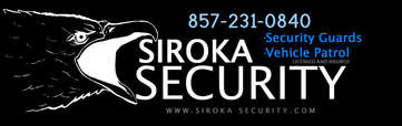 Siroka secuirty logo