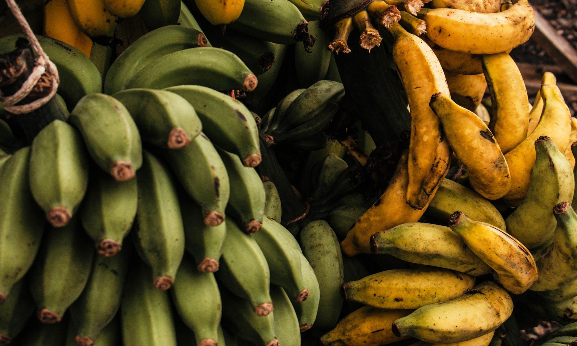 Chocolate Banana Nut Protein Shake
