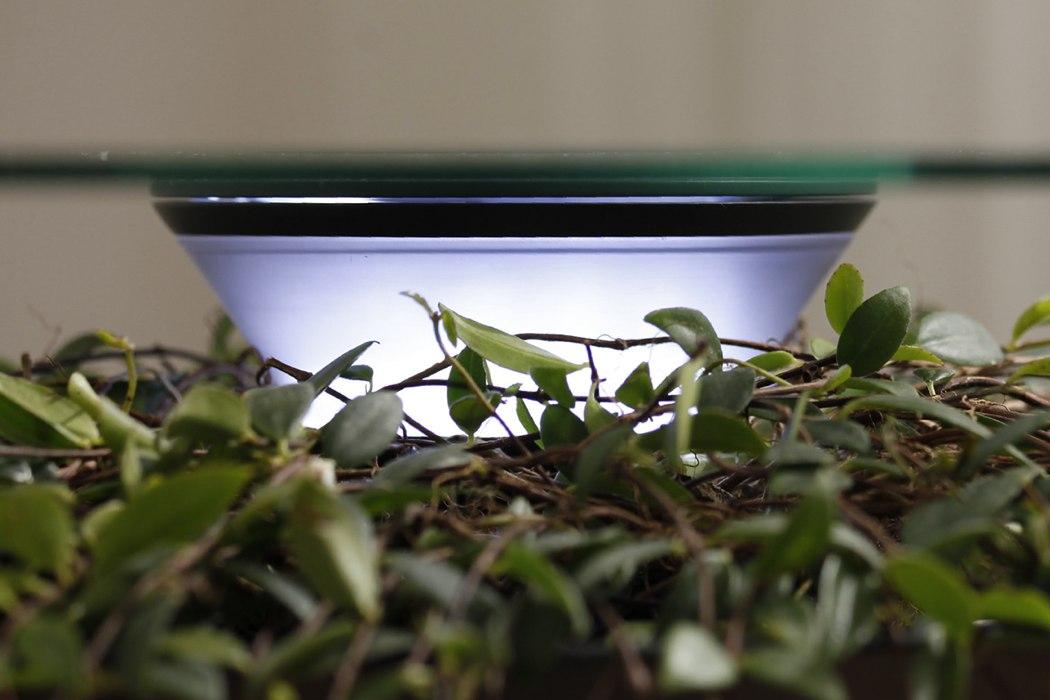 indoor planters, modern indoor planters, indoor planters with stand, indoor plant pots with saucers, extra large indoor planters, tall indoor planters, ceramic planters, indoor plants