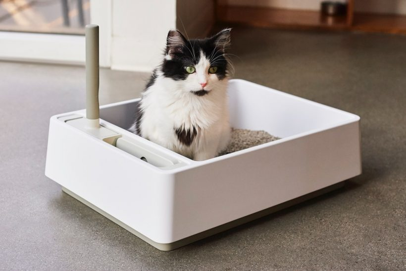 best cat litter box for odor control, hidden cat litter boxes, litter box amazon, litter box target, jumbo cat litter box, self cleaning cat litter boxes, cat litter box furniture, frisco high sided cat litter box, New best product development, best product design, best industrial designers, best design companies, enthusiasts here are your links to look into: best, review, industrial design, product design website, medical product design, product design blog, futuristic product design, smart home product design, product design portfolios, cool products, best products, cool designs, best designs, awesome new, best new, awesome products, cool stuff, best technology, awesome pictures, awesome photos, new products, new technology, cool, cool tech, new tech, awesome, product design product, industrial design, design, best design, best companies, 3dmodeling, modern, minimalism,