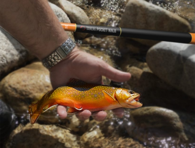 fish, tenkara rod, collapsible fly rod, teton fly rods, mini tenkara rod, japan fly fishing, packable tenkara rod, tenkara rod companies, tenkara rod kit, New best product development, best product design, best industrial designers, best design companies, enthusiasts here are your links to look into: best, review, industrial design, product design website, medical product design, product design blog, futuristic product design, smart home product design, product design portfolios, cool products, best products, cool designs, best designs, awesome new, best new, awesome products, cool stuff, best technology, awesome pictures, awesome photos, new products, new technology, cool, cool tech, new tech, awesome, product design product, industrial design, design, best design, best companies, 3dmodeling, modern, minimalism,