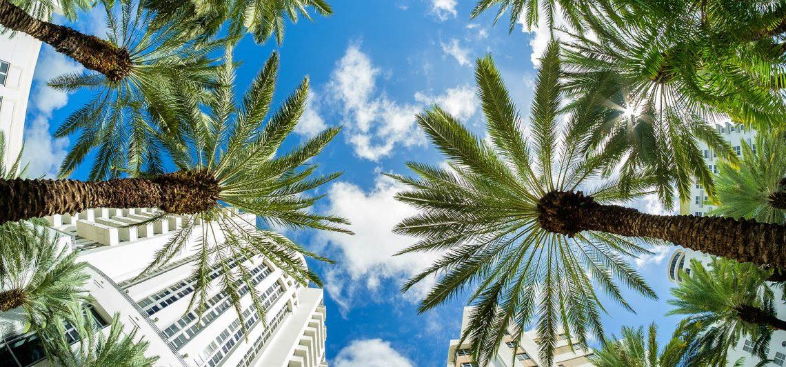 Nuestra guía de cosas para hacer en Miami - Avantrip Blog