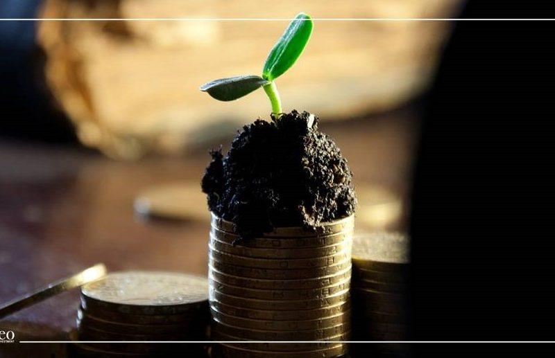 ما هي توزيعات الأرباح ولماذا تدفعها الشركات للمساهمين؟