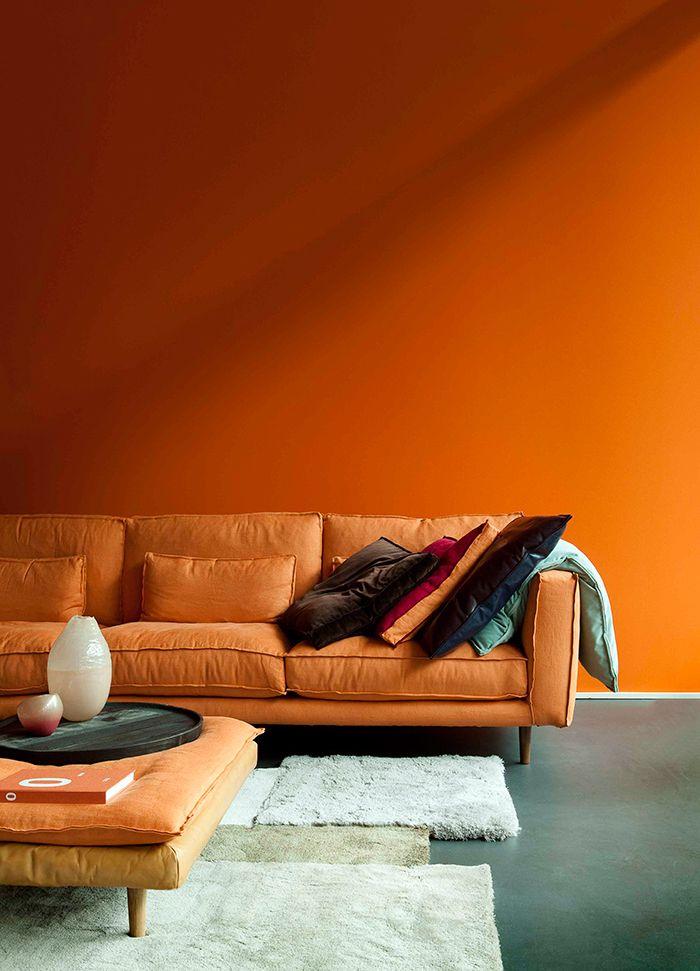 carrodemola laranja