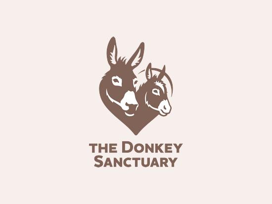 16 - donkey