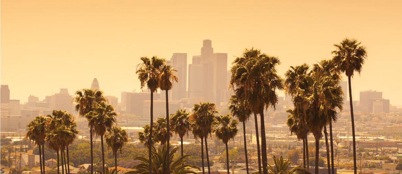 Promising Careers in Los Angeles Image