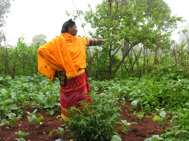 Zenaye Assefa stands in the vegetable garden behind her house in southern Ethiopia. Photo by Sarah Livingston