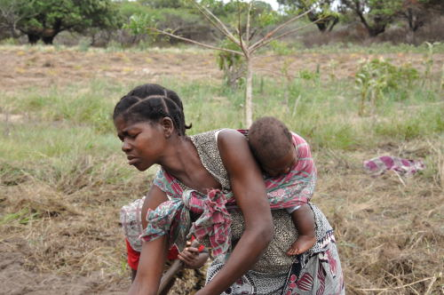 Violeta Sithole, with her son on her back, prepares her field to plant beans. Photo by Chris Hufstader/Oxfam America.