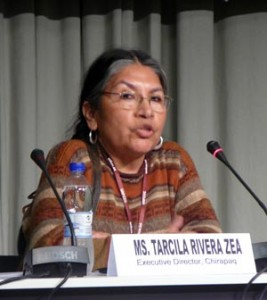 Tarcila Rivera Zea, a Quechuan activist from Peru and director of the indigenous rights group Chirapaq. Photo by Emily Gertz.
