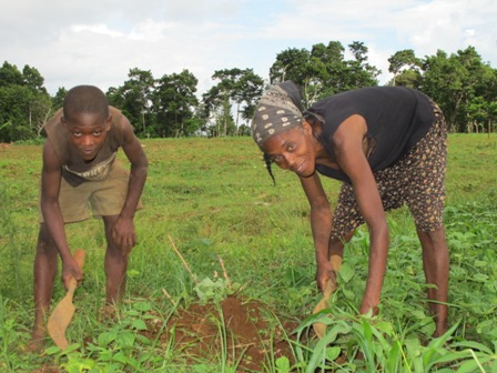 Marie Camel Rubin and her son, Noel Jolins, weed their field in Paillant, Haiti.