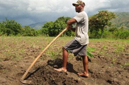 Tipape Cenoble has earned a profit from his fields for the last two years. Photo by Ami Vitale/Oxfam America