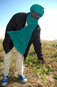 Malian rice farmer Moussa Ag Demba visited an Iowa organic farm last week. Photo: Sarah Peck / Oxfam America