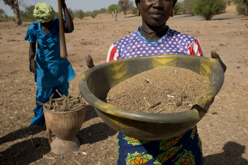 Women pounding millet in Kalbiron, in eastern Senegal. Photo by Brett Eloff/Oxfam America.
