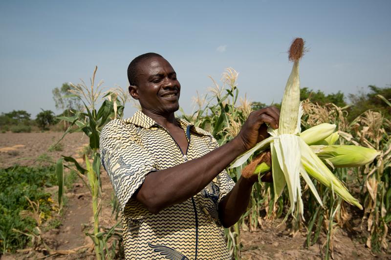 Farmer Marcel Ouedraogo, near Bobo-Dioulasso, Burkina Faso, April 2013. Photo: Brett Eloff / Oxfam America