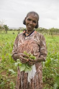 Silas Samson Biru in one of her corn fields in Ethiopia.  Photo by Eva-Lotta Jansson/Oxfam America.