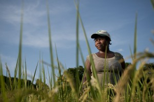 In the village of Quatorzieme, Oxfam is helping a small group of women experiment with innovative practices of growing rice known as System of Rice Intensification or SRI. Brett Eloff/Oxfam America