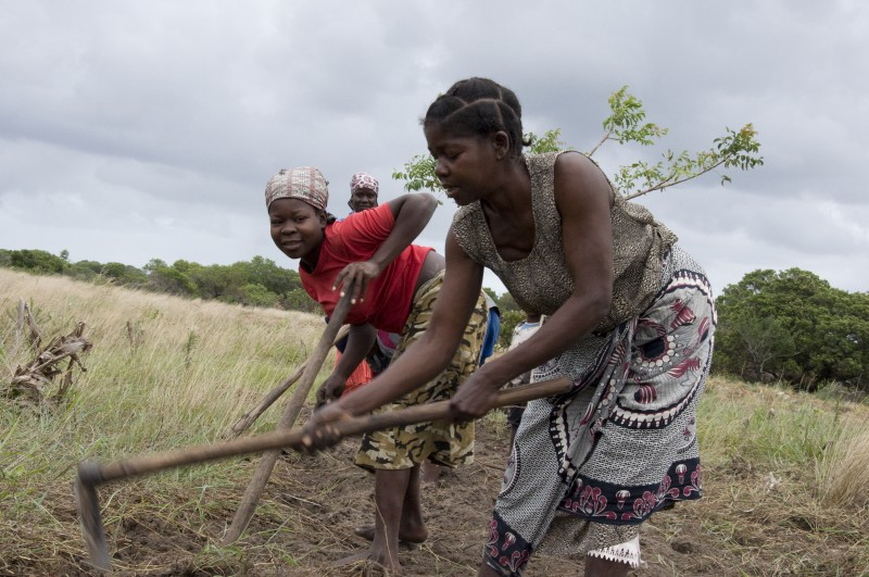 Violeta Sithole, works with her family to prepare a field to plant beans near her home in Nzeve, Mozambique. Photo: Chris Hufstader/ Oxfam America