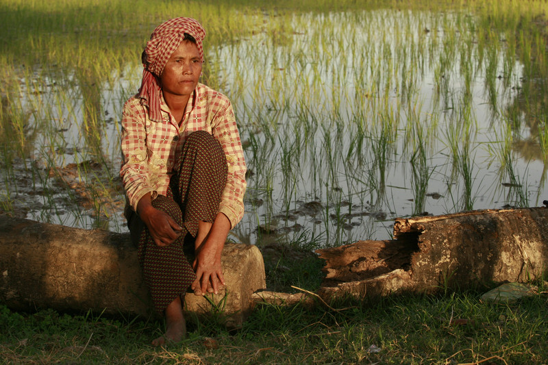 Yem Dieb's owns about .25 acre of land next to her family's home and rents an additional two plots of land comprising less than half a hectare total. She plants rice three times a year. Photo: Sokunthea Chor / Oxfam America.