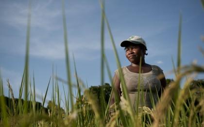 Kenia Laine in her rice fields in Haiti. (Photo: Brett Eloff / Oxfam America)