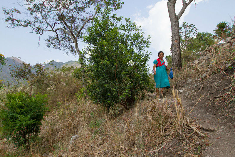 land Guatemala climate crisis drought