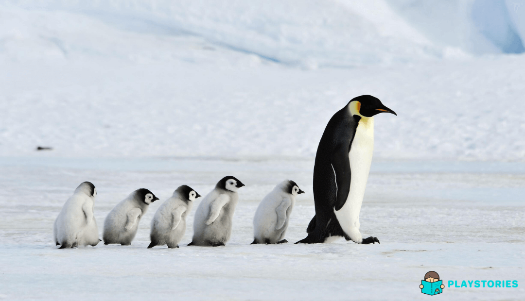 Meet the animals that live on ice