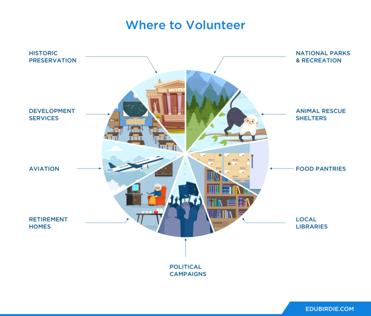 Where to Volunteer