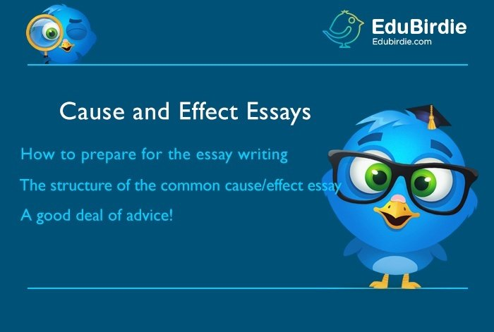 How to make a cause and effect essay