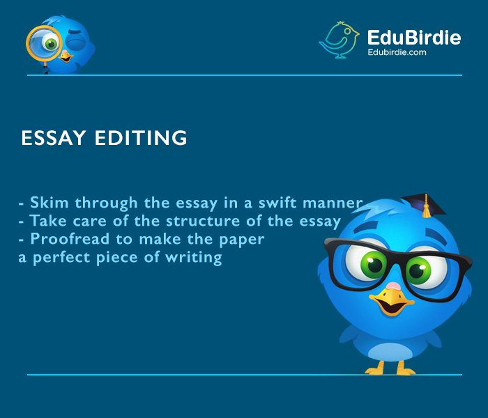 Editing Essays  Simple Writing Tips  Edubirdiecom Essays Editing Business Plan Writers In Columbia Sc also University English Essay  Examples Of An Essay Paper