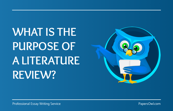 Purpose Of Literature Review On PapersOwl