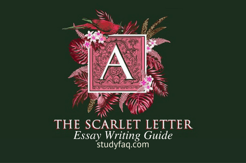 the scarlet letter essay writing guide studyfaq com the scarlet letter essay writing guide