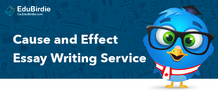Cause And Effect Essay Writing Service From Canada