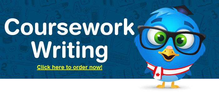Custom coursework writing service york
