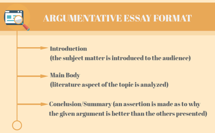 What Is The Convenient Writing Essay Structure  Auedubirdiecom Argumentative Essay Writing