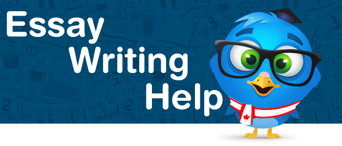 websites to help write an essay