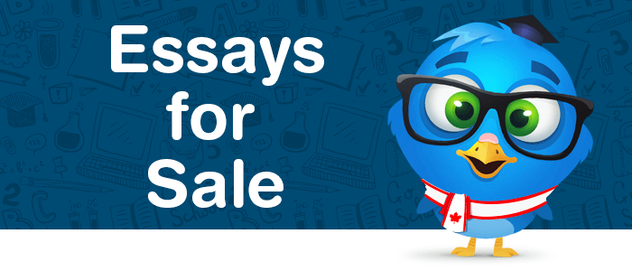 A-Grade Essays for Sale from Professional Writers