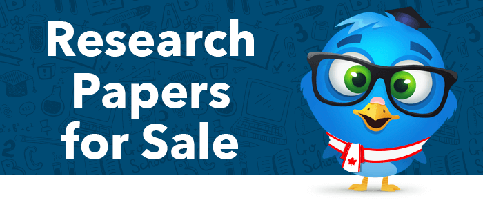 Cheap Research Papers For Sale – Hurry To Get Yours!