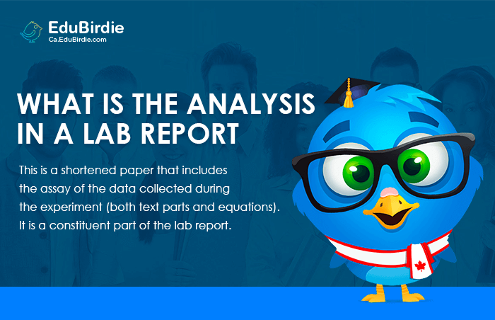 What Is the Analysis in a Lab Report