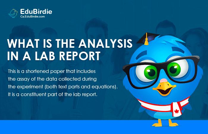 Analysis Lab Report