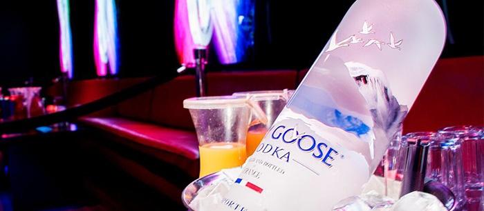 bottle-service-101-grey-goose