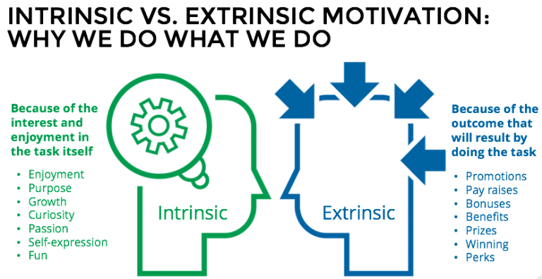 intrinsic vs extrinsic motivators