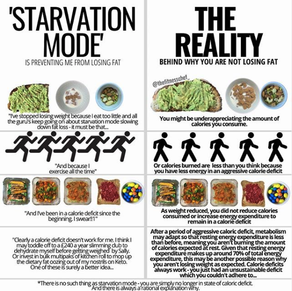 Starvation mode vs reality