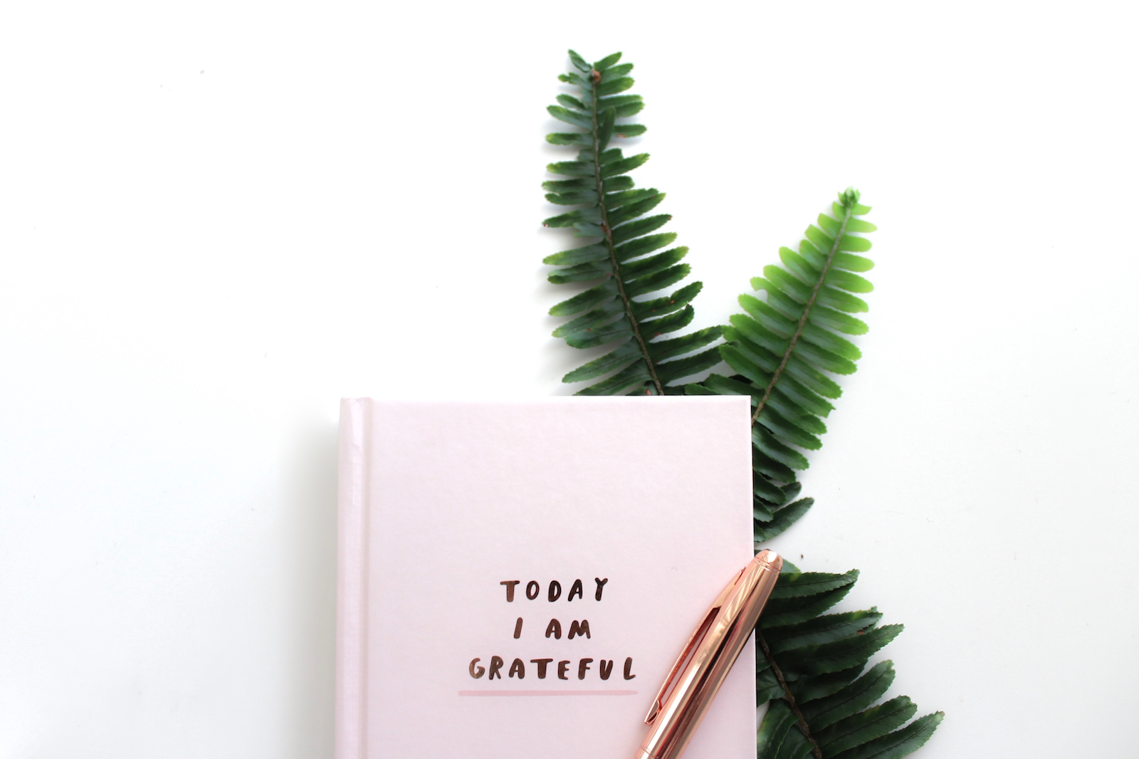 today I am grateful for diary