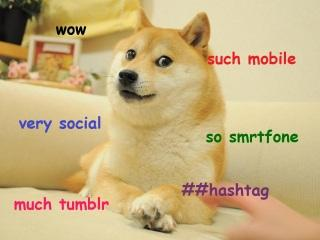 marketing tech doge