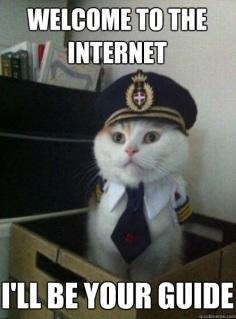 marketing tech internet cat