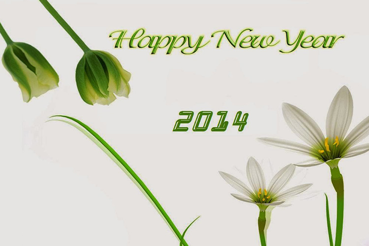 Happy New Year from Durwin Randle's Blog
