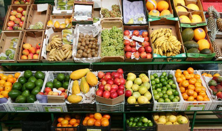 Qual a diferença entre vegetariano e vegano?