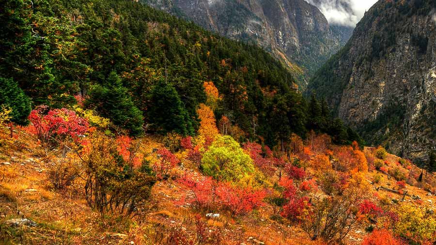 The Colors of Fall in the Annapurna Seven Passes Trek