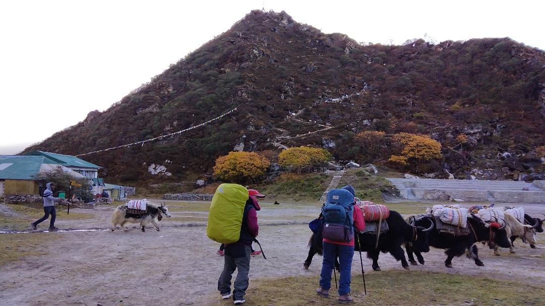 Trekkers in Everest Base Camp Trail